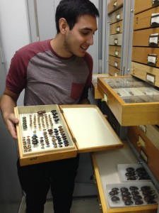 Joshua Oliva discovers a new species of firefly