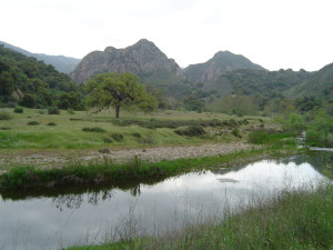 Malibu Creek at the State Park, found as having the worst water during the study.