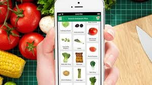 Users can shop for groceries from their phone and have them delivered the same day.