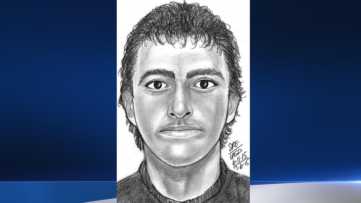 West Hollywood attacker sketch