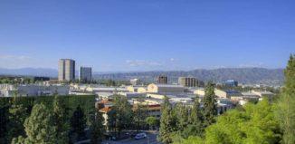Hollywood Hills Body