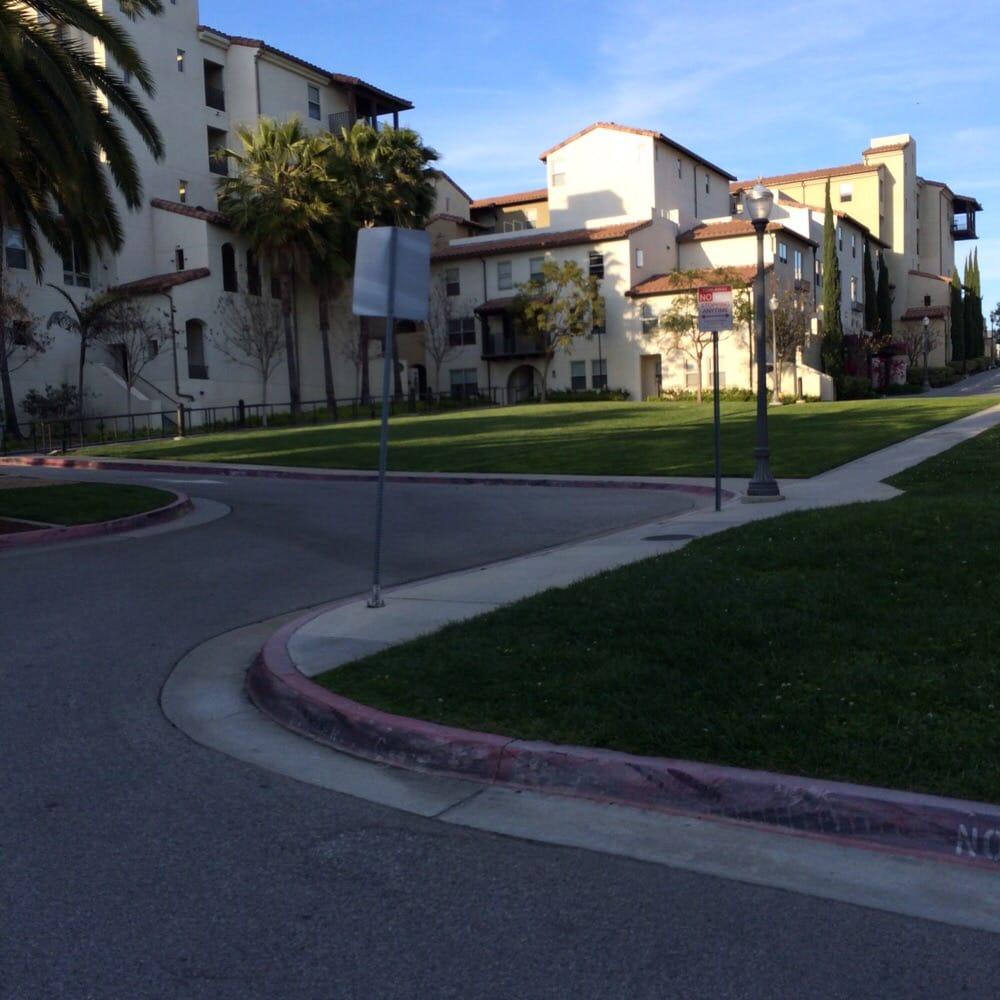 UCLA Student Found Dead Inside University Apartment