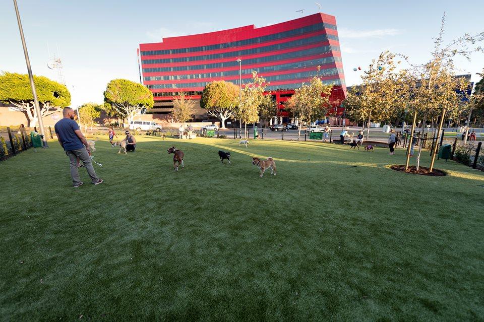 North Hollywood Dog Park