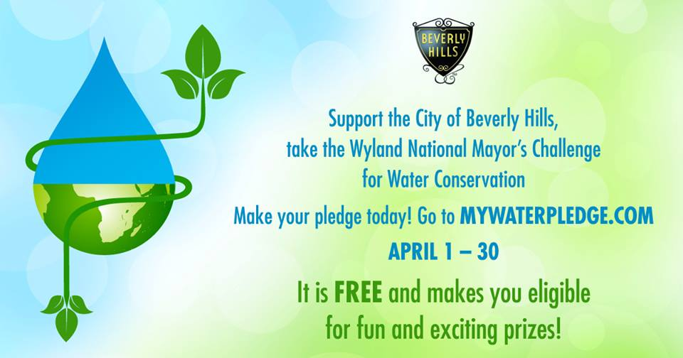 mayor gold joins water conservation challenge canyon news