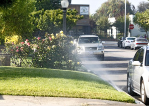 Los Angeles Approves Controversial Water Conservation Plan