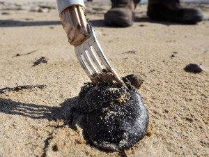 """Tar balls"" have been reported along the shores of several popular South Bay beaches."