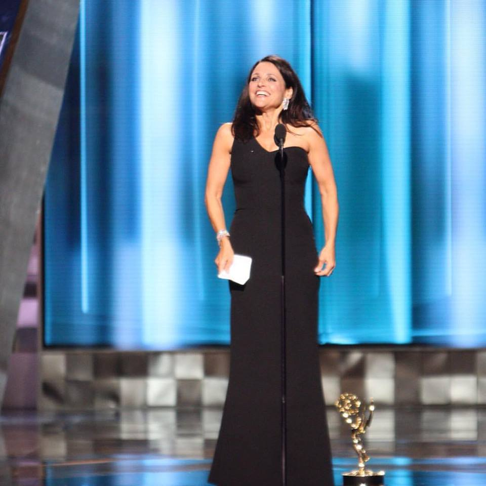 "Julia Louis-Dreyfus won the prize for Lead Actress in a Comedy Series for her work on ""Veep."""