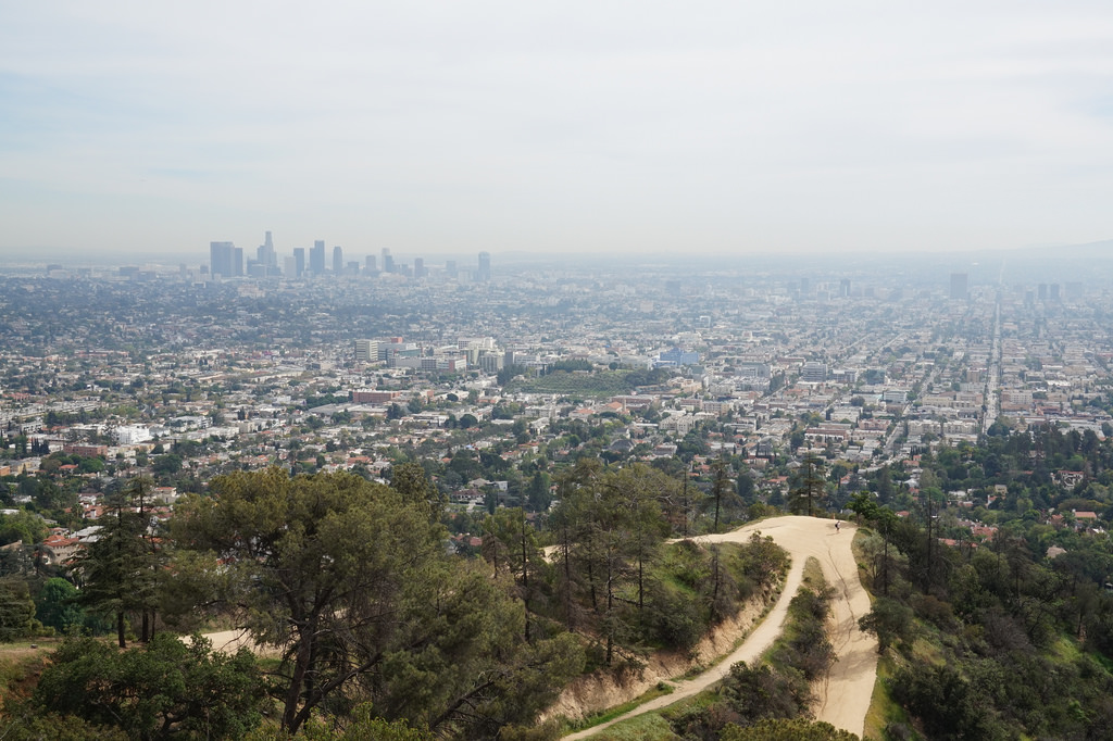 The LA skyline from Griffith Park.